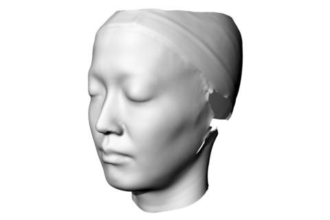 鍋谷選手の顔のスキャニングデータをもとにモデル化